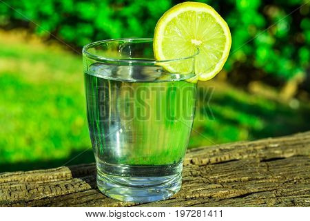 Glass of pure water with lemon wedge circle on wood log green grass plants in the background outdoors bright sunlight health hydration detox cleansing