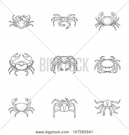 Underwater crab icons set. Outline set of 9 underwater crab vector icons for web isolated on white background