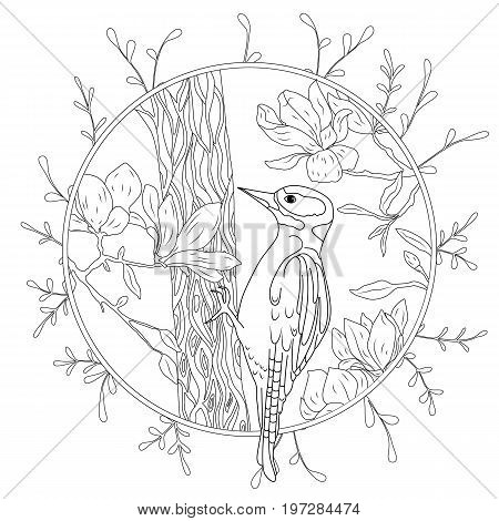stylized cartoon woodpecker on tree branch. Hand drawn sketch for adult antistress coloring page.