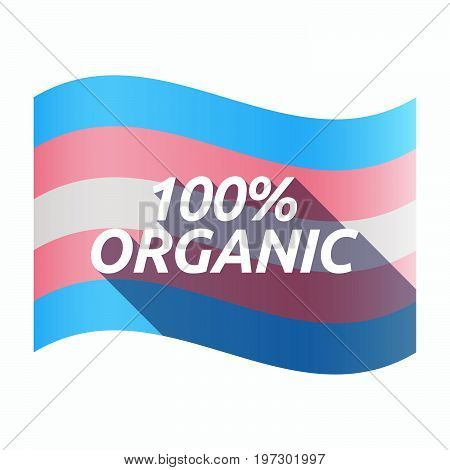 Isolated Transgender Flag With    The Text 100% Organic