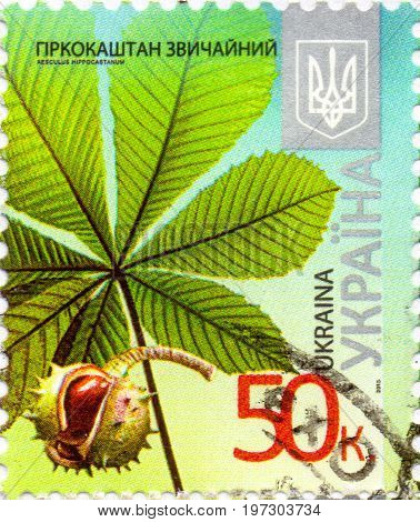 UKRAINE - CIRCA 2017: A postage stamp printed in Ukraine shows Horse chestnut - aesculus hippocastanum circa 2013