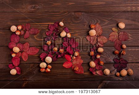Flat lay the word FALL from autumn red leaves hazelnuts and walnuts on a dark wooden background. Selective focus.