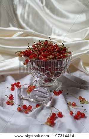 beautiful red juicy currant berry in crystal cup for romantic dessert