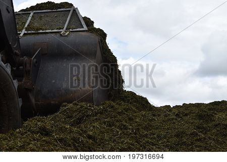 The front loader rolls into chaff a silo pit.