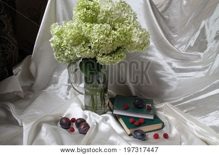 bouquet of white hydrangea flower in summer bloom with book in green cover and ripe sweet pulms and raspberries