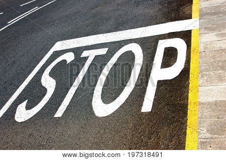 Stop road markings painted in white on the asphalt