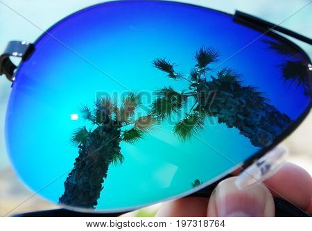 sun and palms reflacting in sunglasses summer holiday background concept