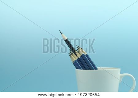 pencils in white cup on blue background concept in leader and standout