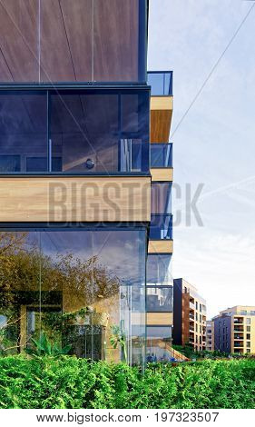 Modern Glass Apartment Building And Birch Trees