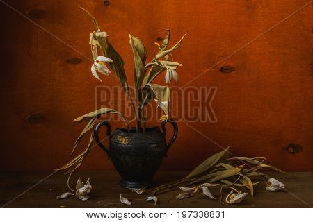 Dry Tulips In Metal Vase- Still Life