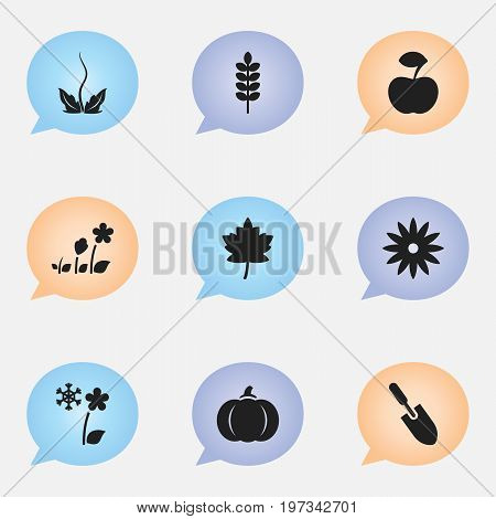 Set Of 9 Editable Agriculture Icons. Includes Symbols Such As Barley, Gourd, Decorative And More