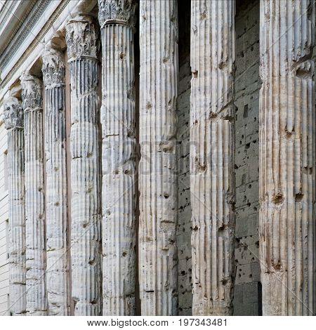 Corinthian Granite Columns In Pantheon In Rome