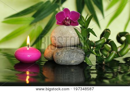 Pebbles arranged in Zen lifestyle in the center with an orchid at the top with bamboo stalks and a lighted pink candle