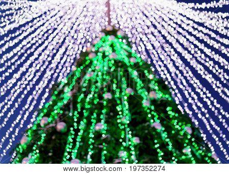 Fragment Of Christmas Tree At Night Vilnius