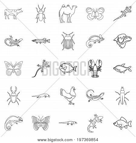 Animals from desert icons set. Outline set of 25 animals from desert vector icons for web isolated on white background