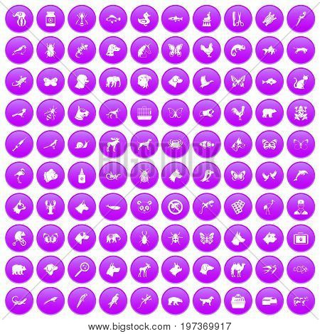 100 animals icons set in purple circle isolated on white vector illustration