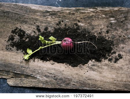 Turnips and soil on a wood
