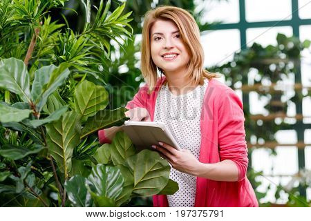 Florist with tablet near ficus