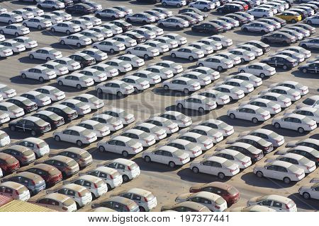 Parking in the seaport for cars brought for sale