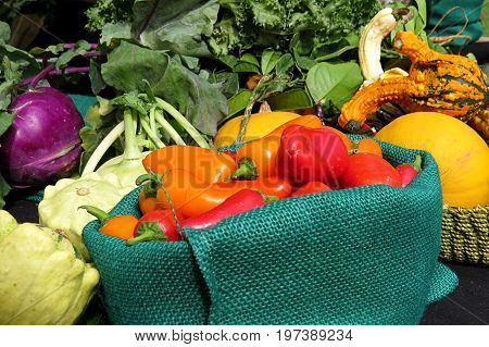 Heirloom vegetables collected in a display with peppers in a basket and surrounded by squash, marrow and more.