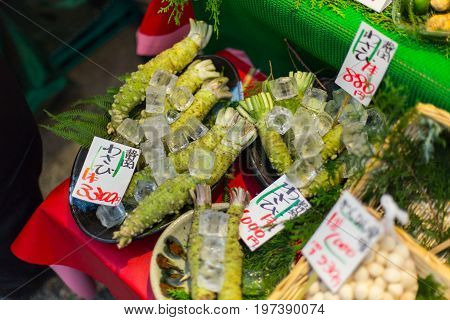 OSAKA. JAPAN - November 16 2016: Japanese horseradish - The Wasabi Store sells wasabi root is most popular japan food favor to eat with Sushi or Sashimi menu.