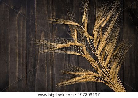 wheat bunch on vintage wooden table background