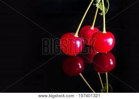 Red Cherries On Black