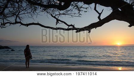 Beachgoer Watching Sunset At Waialea Beach