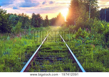 Old abandoned railroad overgrown with grass. Railway track through the forest. Picturesque industrial landscape at sunset. Summer travel. Wonderful view. Fabulous adventure. Rail transportation.