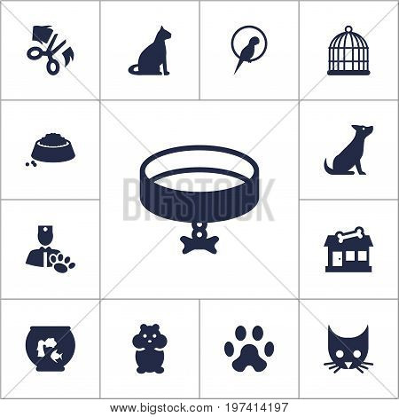Collection Of Fishbowl, Store, Sitting And Other Elements.  Set Of 13 Pets Icons Set.