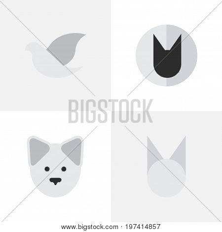 Elements Tomcat, Pigeon, Cat And Other Synonyms Cute, Dove And Bird.  Vector Illustration Set Of Simple Wild Icons.