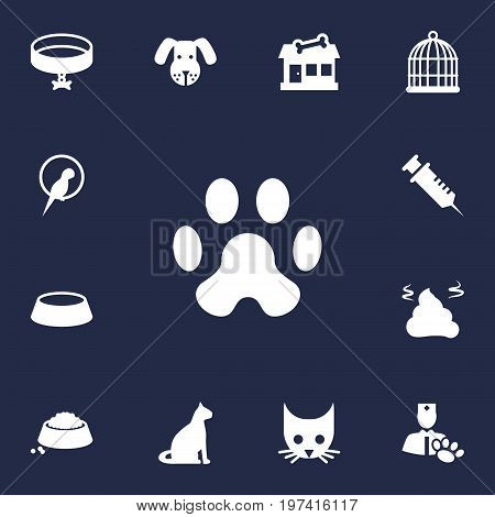 Collection Of Pile , Neckband , Veterinarian Elements.  Set Of 13 Mammal Icons Set.