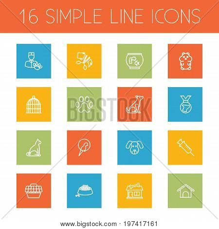 Collection Of Vaccination, Hamster, Caw And Other Elements.  Set Of 16 Animals Outline Icons Set.