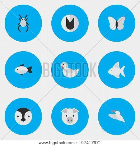 Elements Swan, Fish, Tomcat And Other Synonyms Bird, Swine And Cute.  Vector Illustration Set Of Simple Animals Icons. poster