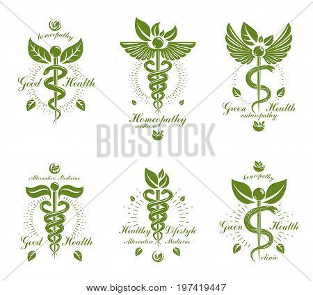 Collection of Caduceus logotypes composed with poisonous snakes and bird wings healthcare conceptual vector illustrations. Alternative medicine theme.