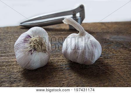 Healthy purple garlic on the wood with the chopper