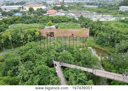 ฺBangkok Thailand July 28, 2017 : top view of project PTT green in the city  by PTT PUBLIC COMPANY LIMITED to growth forest for Thai people spending relaxing time and learning valuable of nature in town