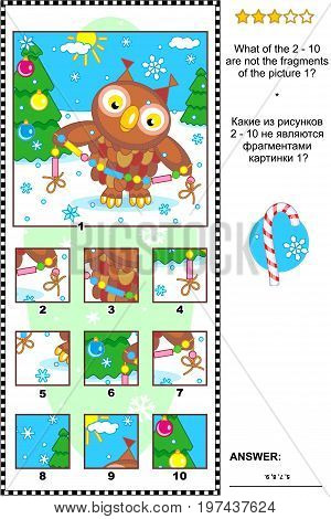 Christmas, winter or New Year visual logic puzzle with owl and garland: What of the 2 - 10 are not the fragments of the picture 1?  Answer included.