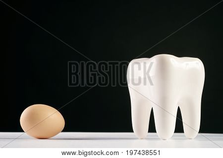 White healthy human tooth model and chicken egg isolated on black background with copy space. Concept of healthy nutrition for strengthening teeth