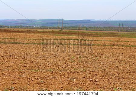 Landscape of cultivated field in the spring