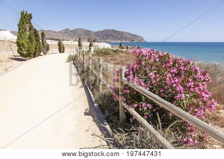 Hiking trail at the mediterranean coast between the towns Isla Plana and La Azohia. Province of Murcia Spain