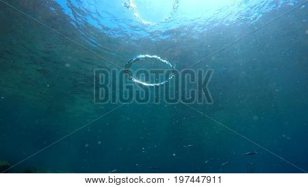 bubbles ring underwater