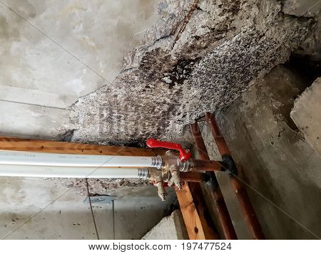 Rainwater leakege damaged concrete. Severe case of structure degradation and safety problem.