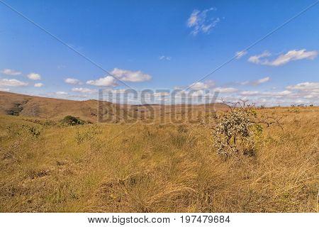 Plateau on Serra da Canastra. Serra da Canastra National Park is a national park in the Canastra Mountains of the state of Minas Gerais Brazil.