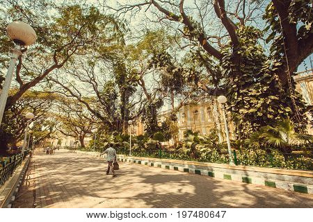 MYSORE, INDIA - FEB 17, 2017: People walking on streets under giant green trees at sunny day on February 17, 2017. With population 900000 Mysore is the cultural capital of Karnataka