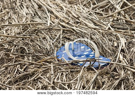 Lone flipflop abandoned in dry marsh grass