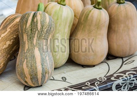 the butternut pumpkin on the wood table