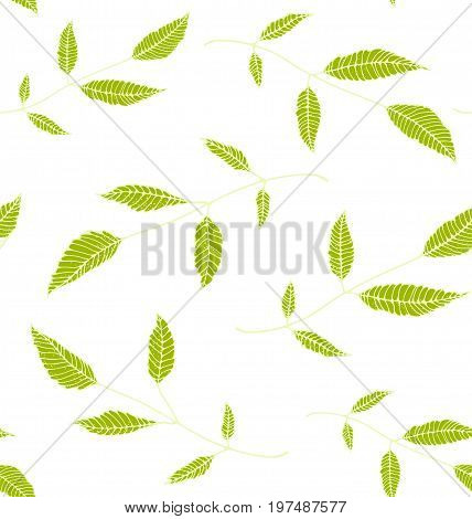 Leaves decorative tileable backdrop for design No background color. Vector illustration