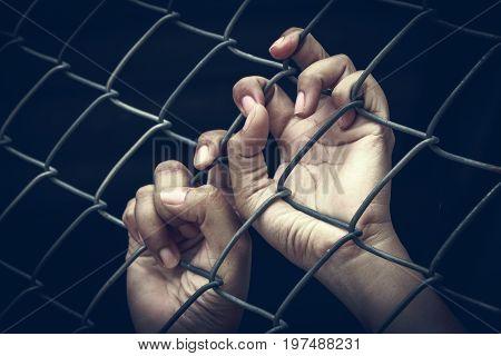Human hands holding metal fence same prisoner