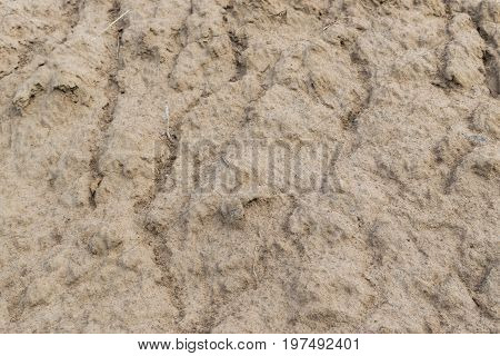 Wet Clay Soil Background